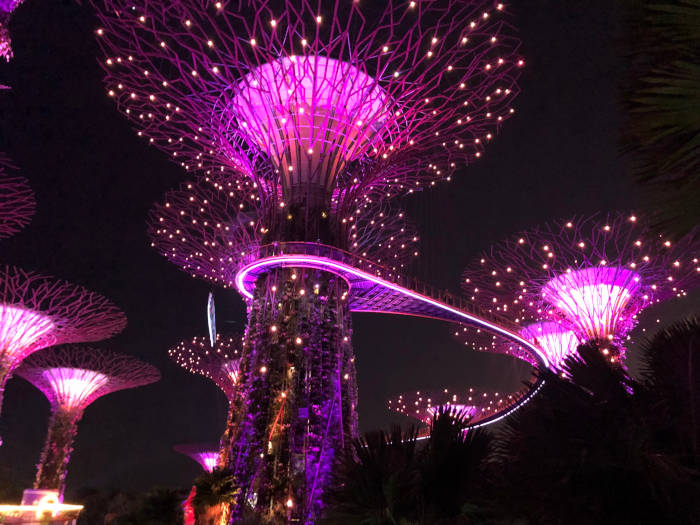 Gardeny_By_the_Bay_Lightshow_Singapore-1
